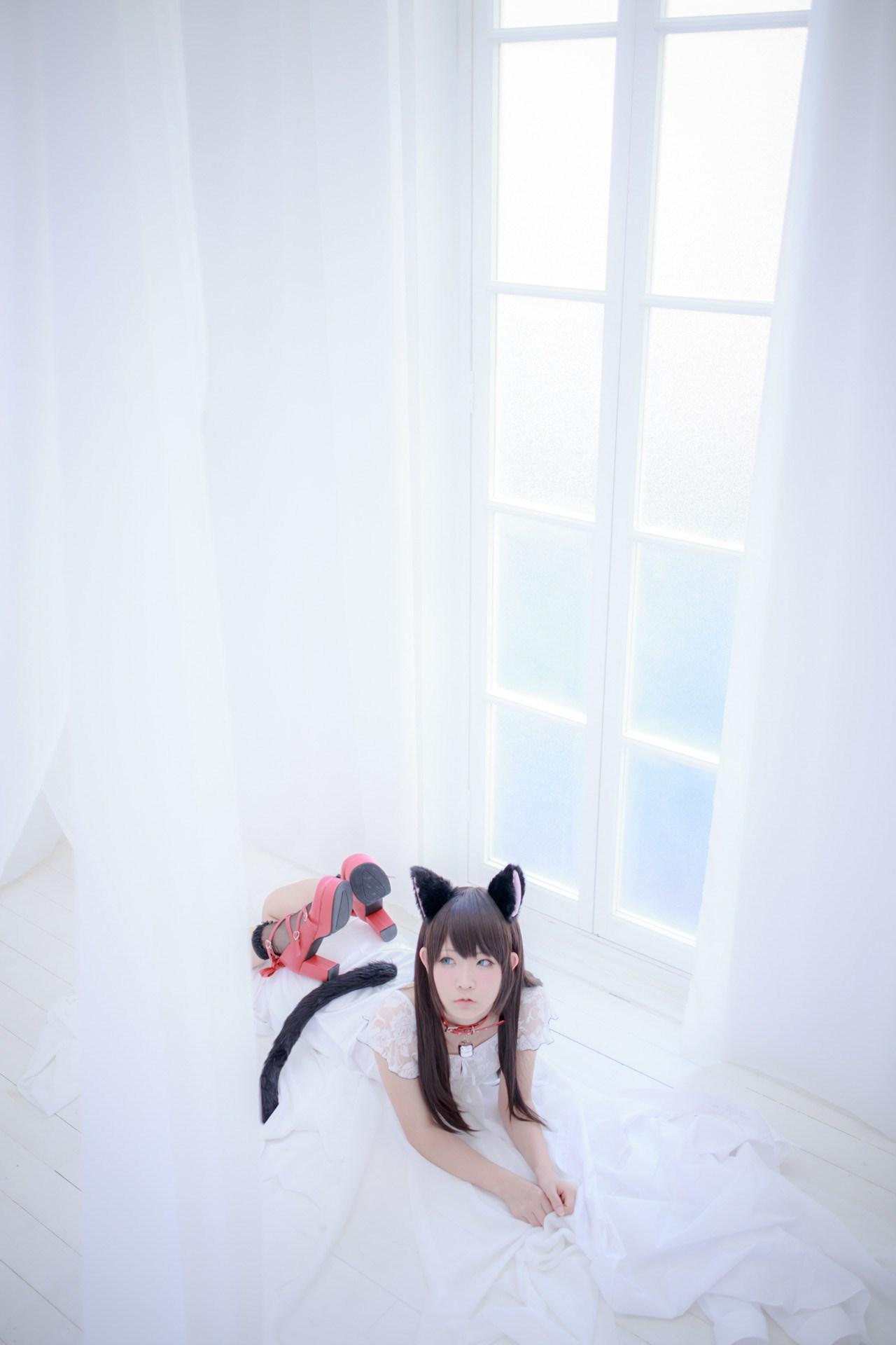【兔玩映画】猫耳 兔玩映画 第37张