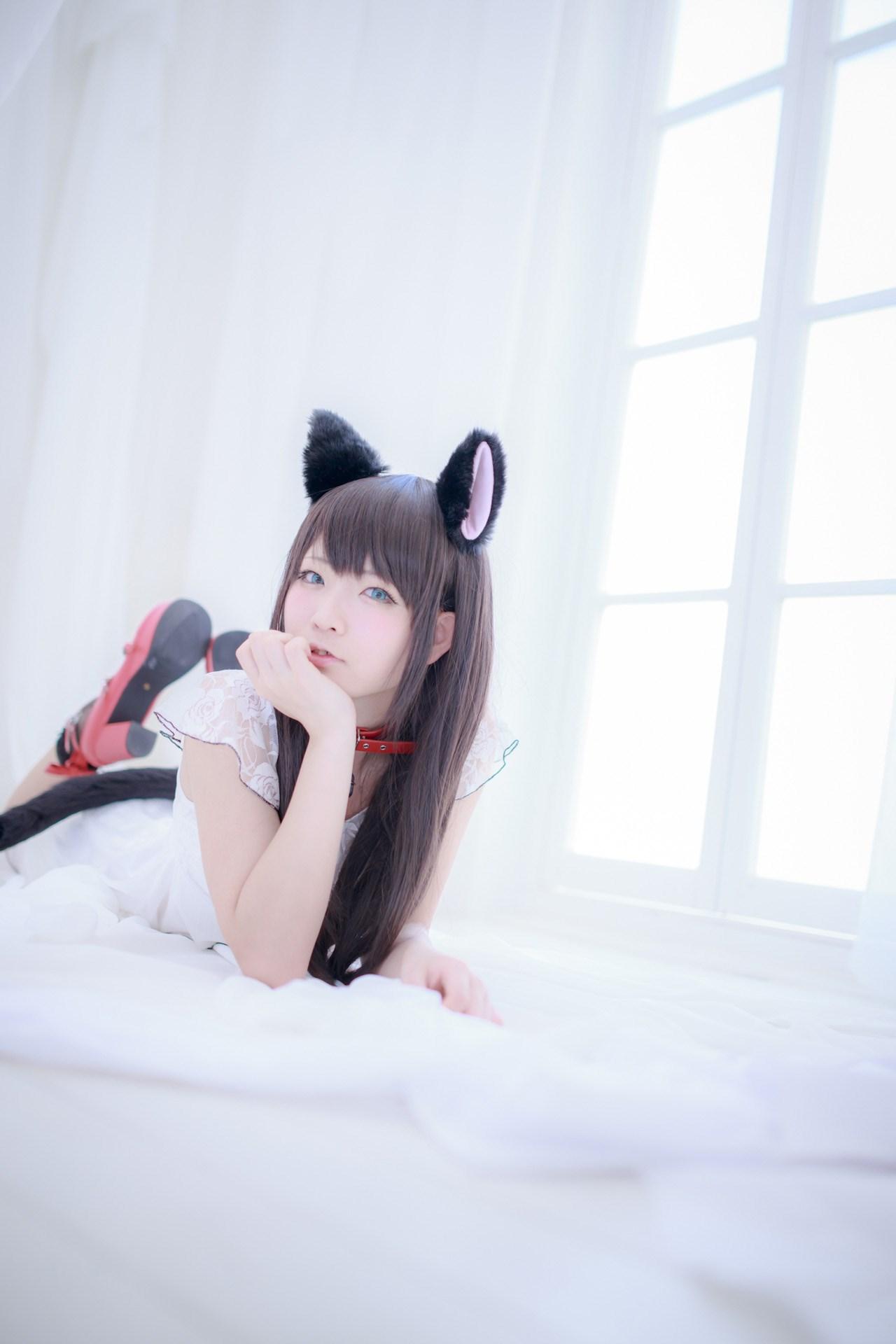【兔玩映画】猫耳 兔玩映画 第21张