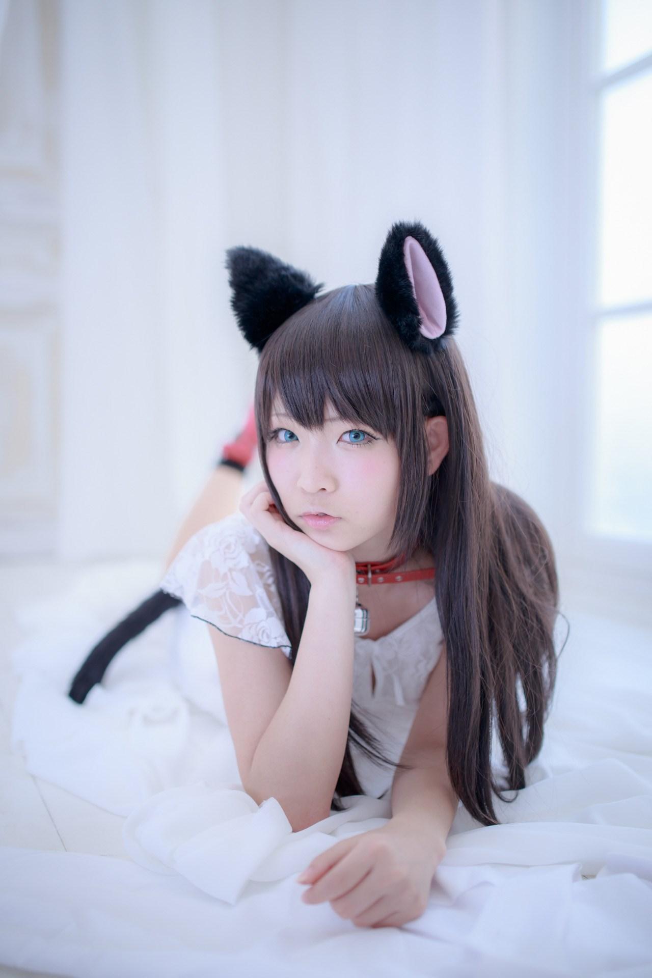 【兔玩映画】猫耳 兔玩映画 第1张
