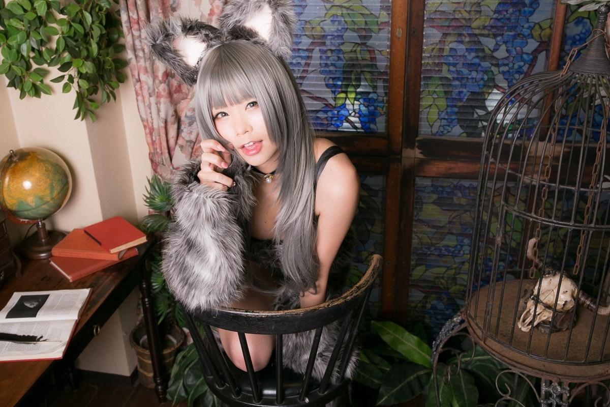 【兔玩映画】大灰狼 兔玩映画 第54张