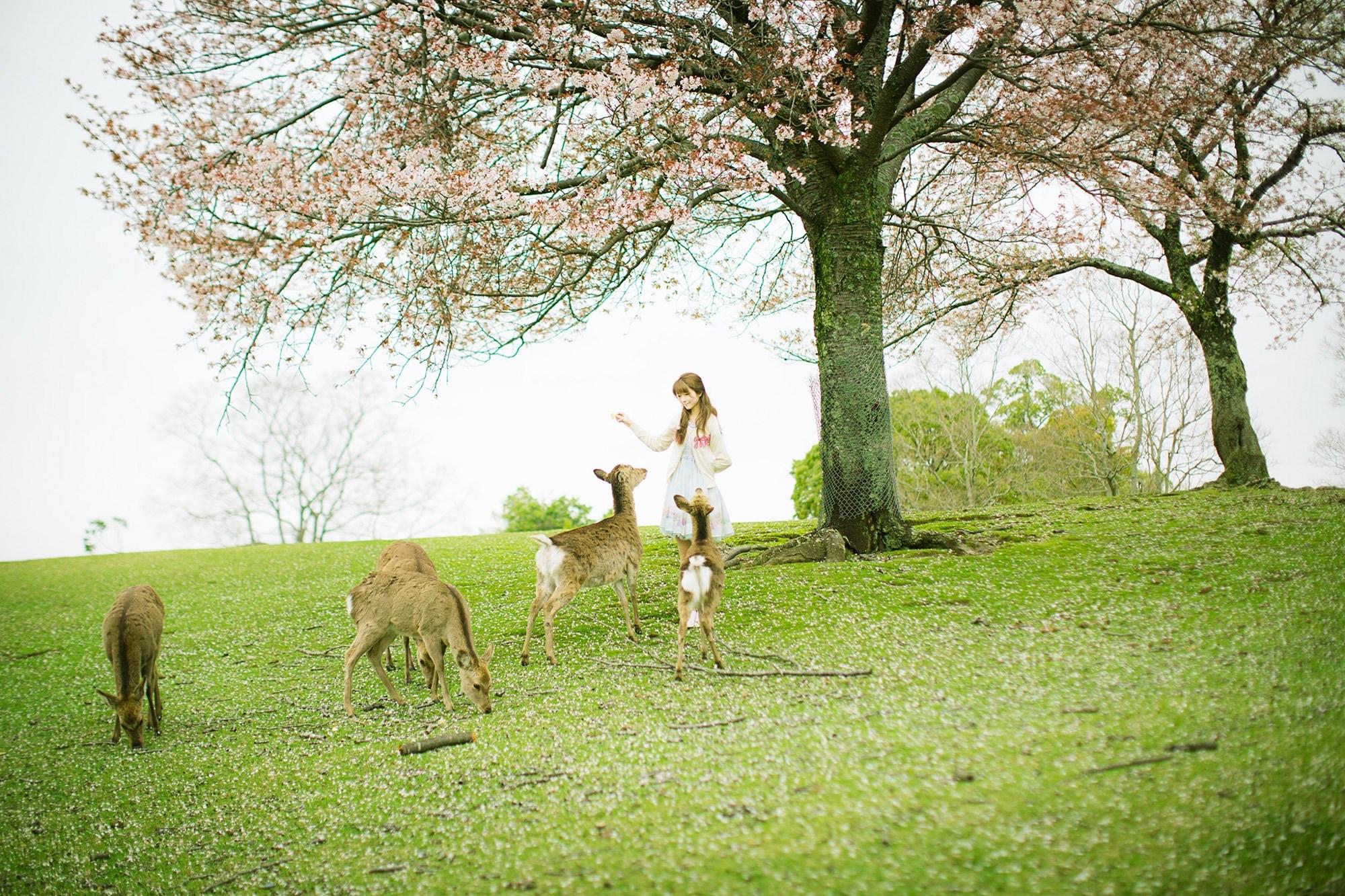 【兔玩映画】Yurisa 兔玩映画 第89张