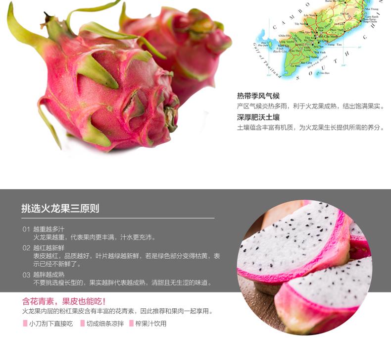 【苏宁生鲜】越南白心火龙果1个400g以上/个 新鲜水果 进口